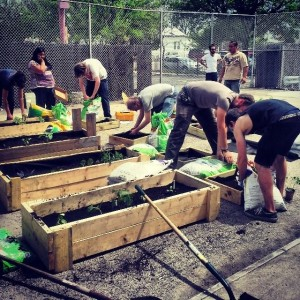 Why Food Not Bombs Pilsen Has Transformed An Abandoned Police Station Into A Community Garden